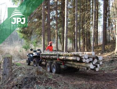 Forstanhänger Waldarbeiter und Arbeitsquad Polaris
